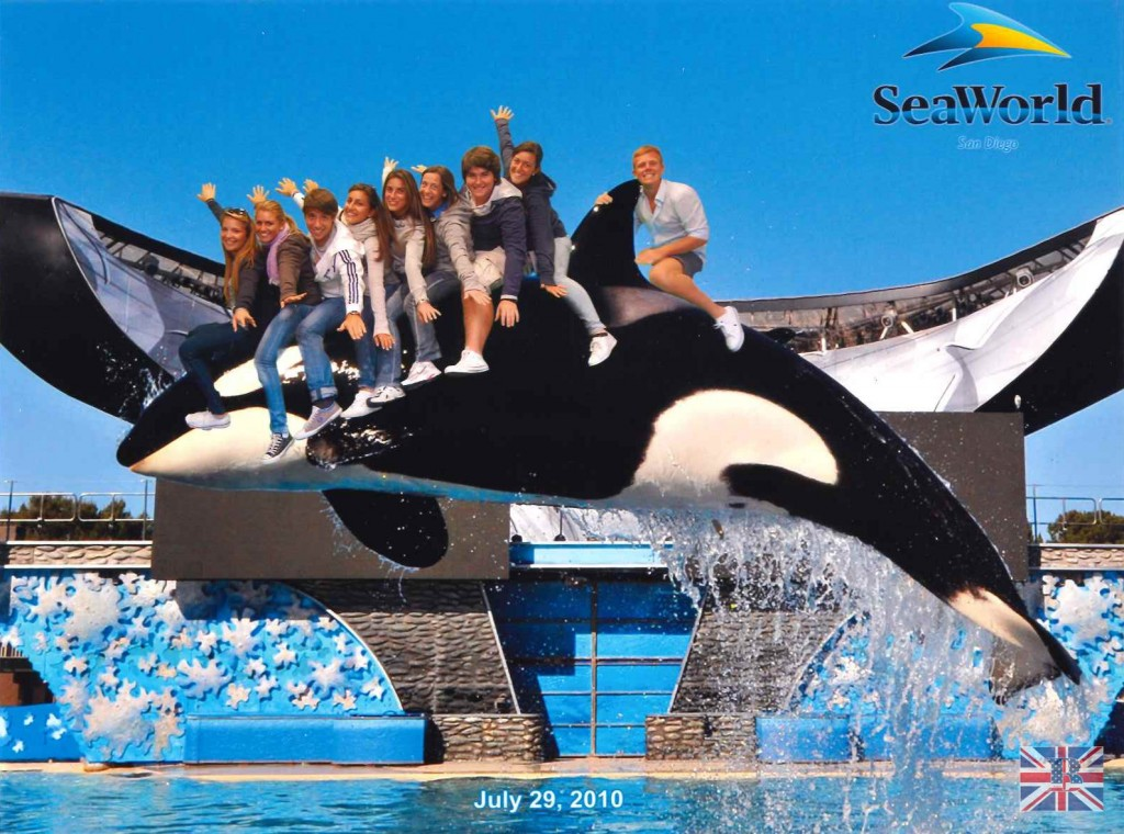 sea_world